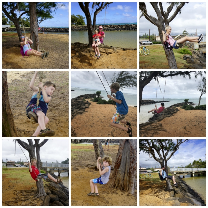 PicMonkey Collage Beach Swings.jpg